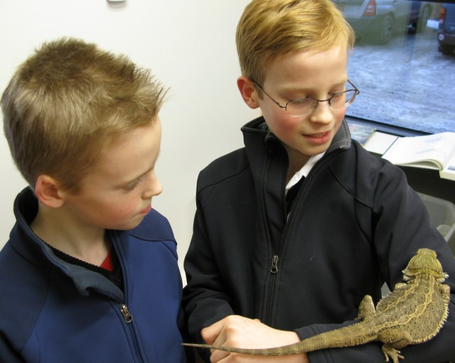 Sam Holding A Lizard With Nik Looking On