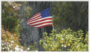 American Flag - Elizabeth Harper
